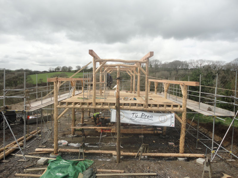 Completed roundwood timber frame for low impact home.