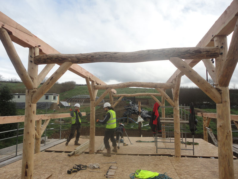 Ty pren team raising roundwood timber frame low impact home.
